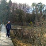Holzsteg im Sumpf